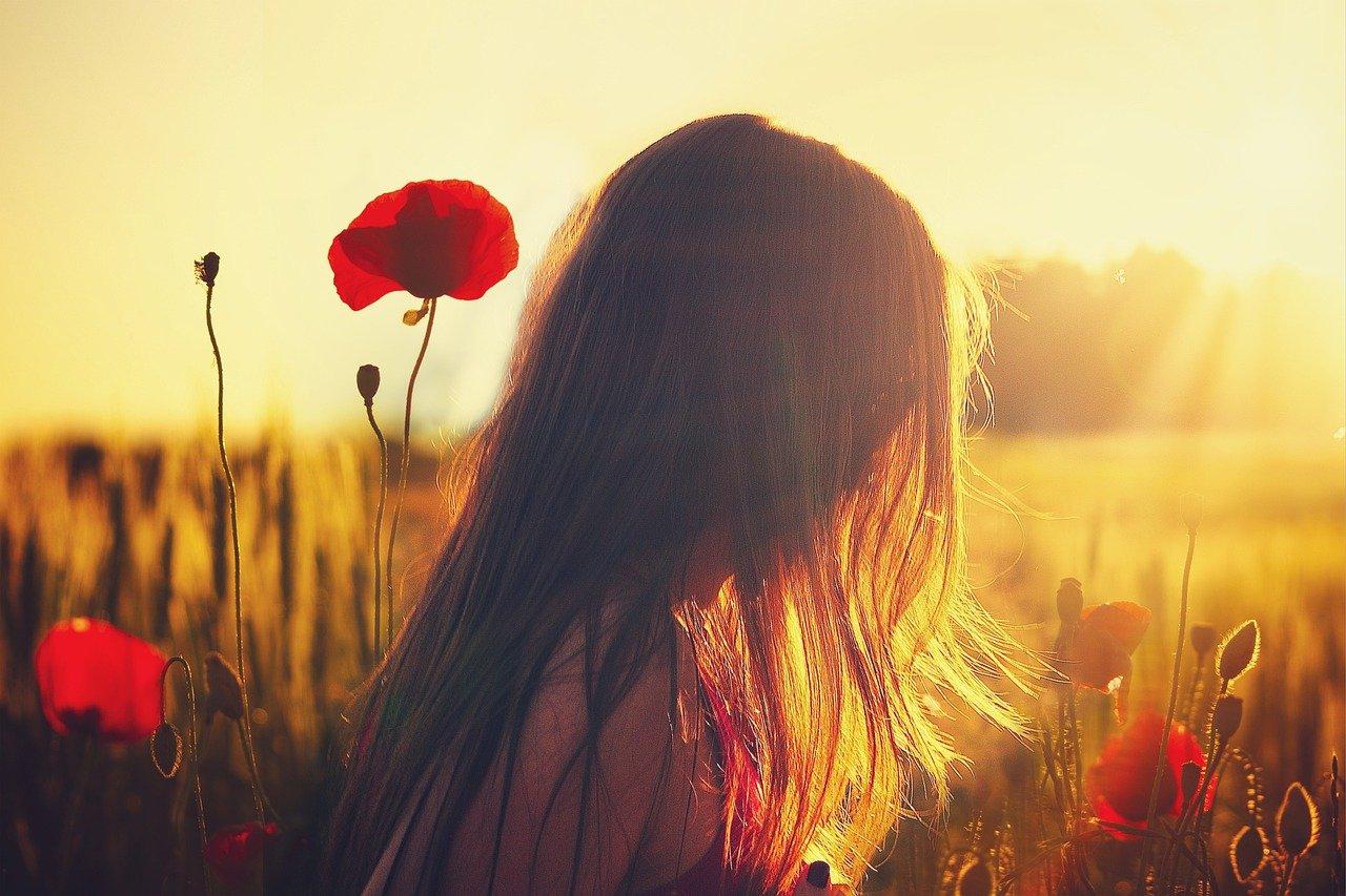 woman, poppies, sunlight